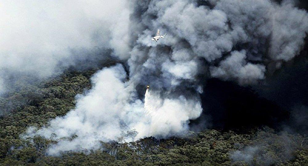 Un avion pompier s'écrase en Australie
