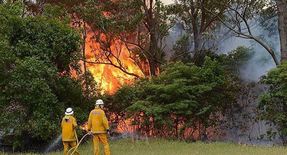 Australie/incendies : les pompiers prennent enfin le dessus