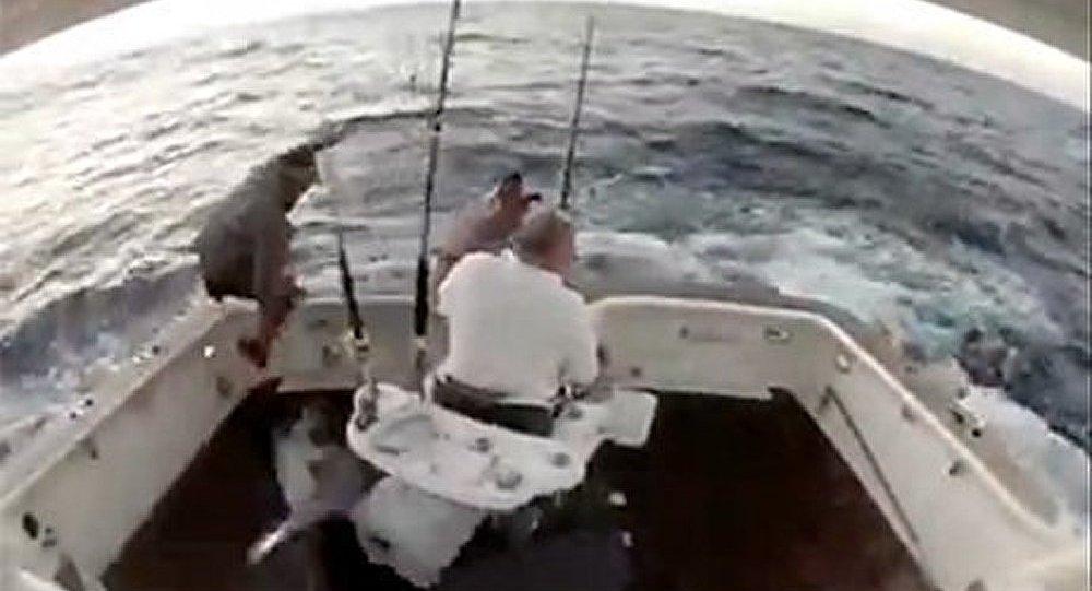 Un poisson agressif pousse le pêcheur hors de sa barque (Vidéo)