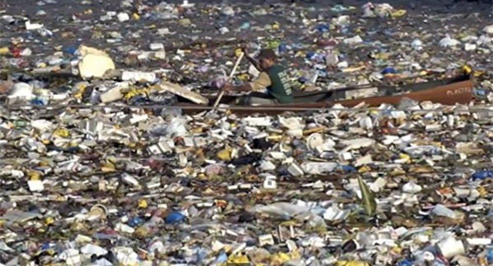 Océan Pacifique : l'énorme île de débris menace les Etats-Unis