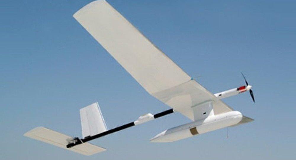 Un drone israélien s'écrase à Gaza
