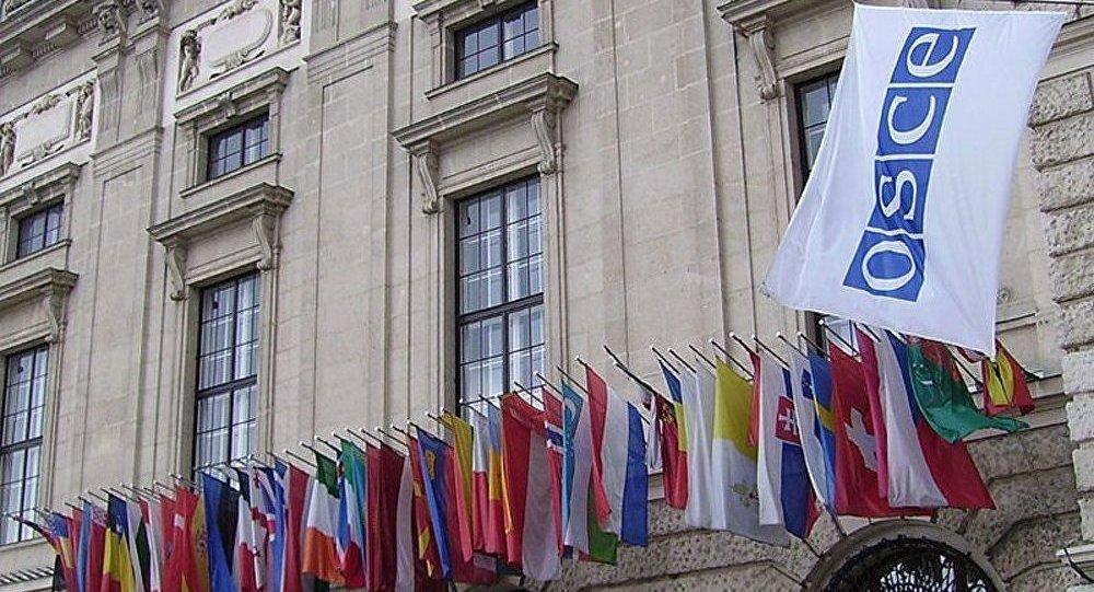 Ukraine: libération des observateurs de l'OSCE