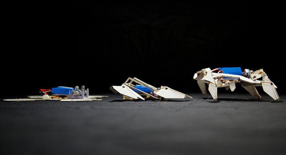 Des scientifiques américains ont créé un robot-origami