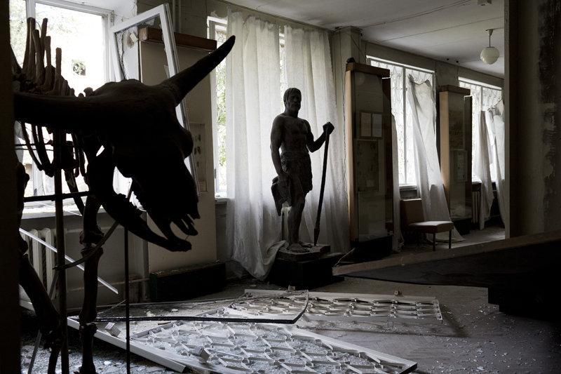 La collection paléontologique comprend des herbiers de plantes rares de la région de Donetsk; des empreintes de plantes fossiles; des restes du mammouth, du rhinocéros laineux, des bisons; des échantillons d'arbres fossiles.