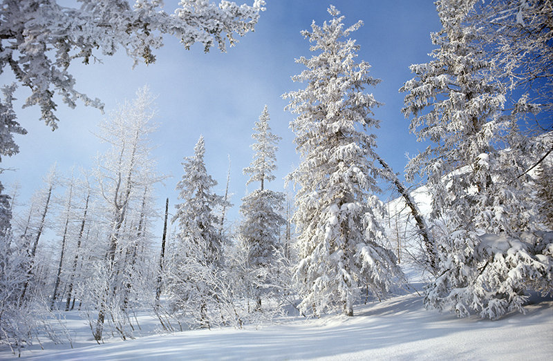 Beautés de Russie : le territoire de Krasnoïarsk