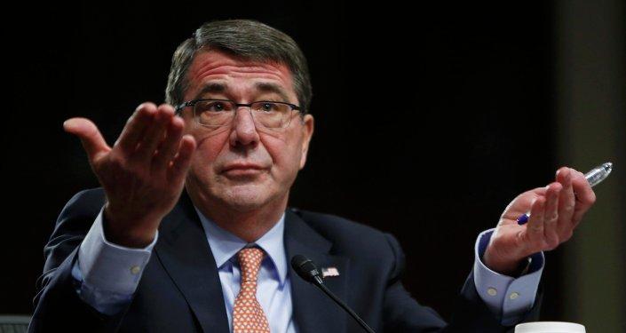 Ashton Carter, secrétaire de la Défense US