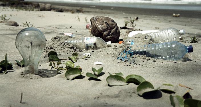 L'homme a-t-il irréversiblement pollué l'océan?