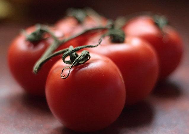 Des tomates japonaises poussent dans le pergélisol en Sibérie