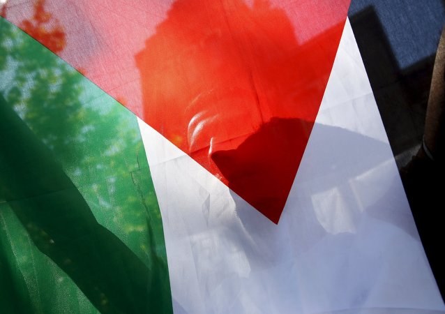 A Palestinian refugee holds the flag of Palestine during a protest in Madrid, Spain, July 21, 2015