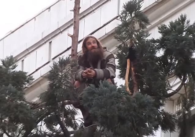 Un homme s'est hissé en haut d'un Séquoia haut de 25 mètres en plein centre de Seattle