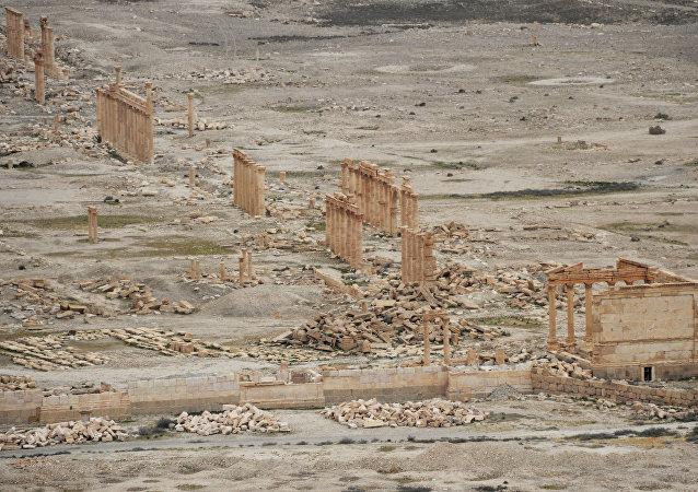La cité antique de Palmyre après sa libération