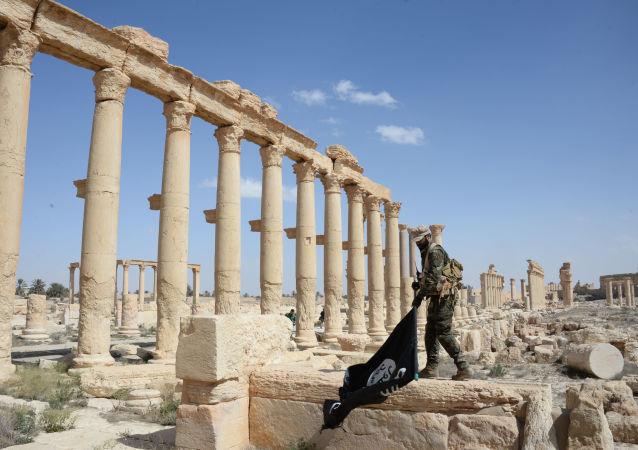 Un milicien de la brigade Faucons du désert s'apprête à jeter par terre le drapeau de Daech.