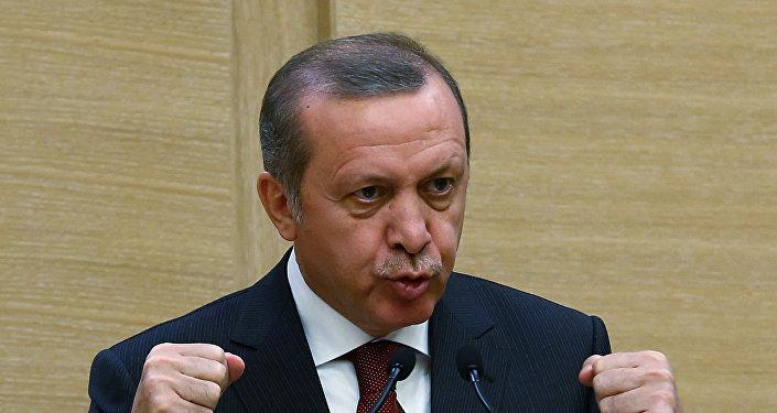En Turquie, des internautes emprisonnés pour insultes contre Erdogan