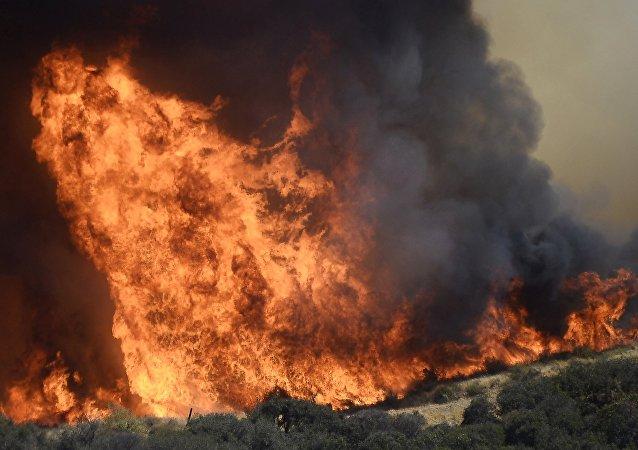 Forêts en Californie en feu