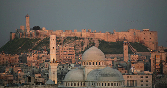 la ville d'Alep en Syrie