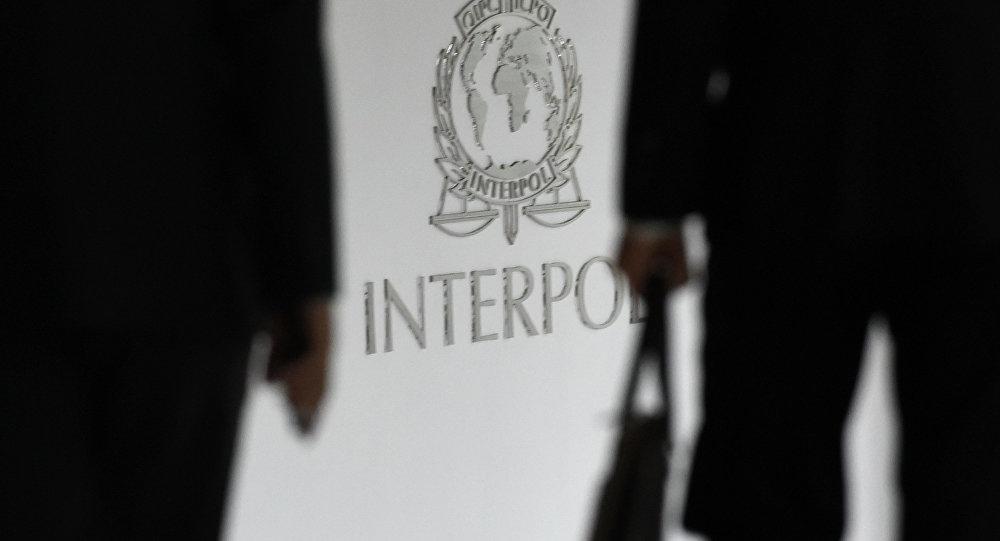 Interpol dévoile les noms des 173 kamikazes de Daech les plus dangereux pour l'Europe