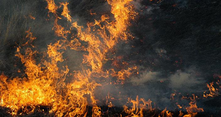 Ukraine un incendie dans une maison de retraite fait 17 for Anti incendie maison