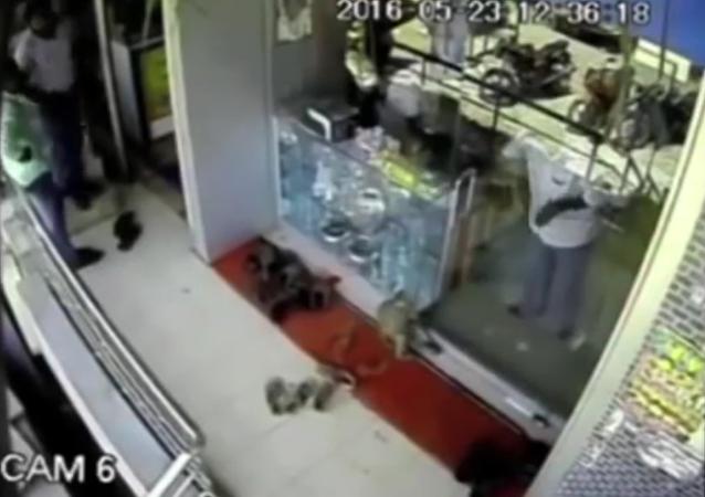 Un singe voleur