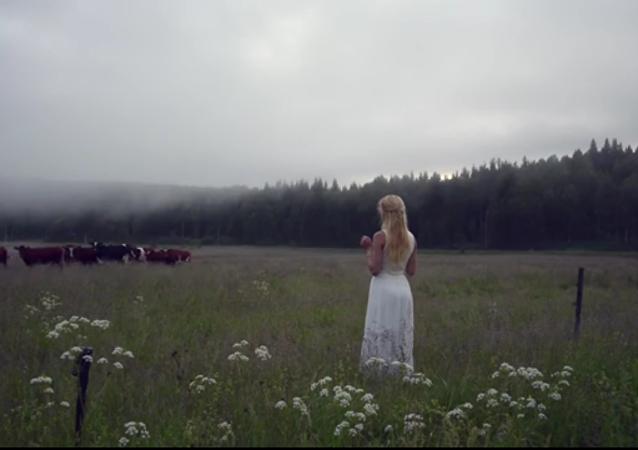L'élevage suédois à l'ancienne en action