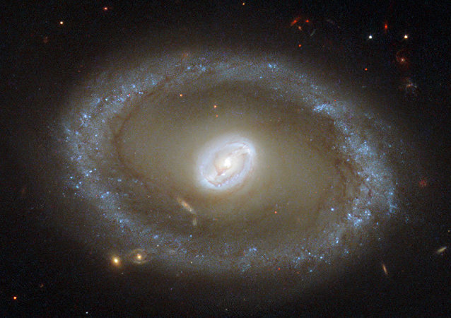 Hubble Eyes Golden Rings of Star Formation