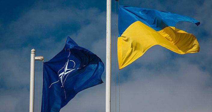 Le président ukrainien compte organiser un référendum sur l'adhésion à l'Otan