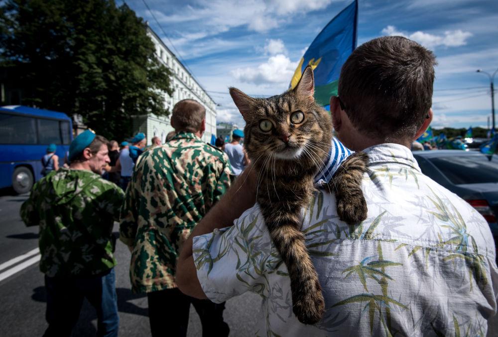 La célébration de la Journée des troupes aéroportées à Saint-Pétersbourg