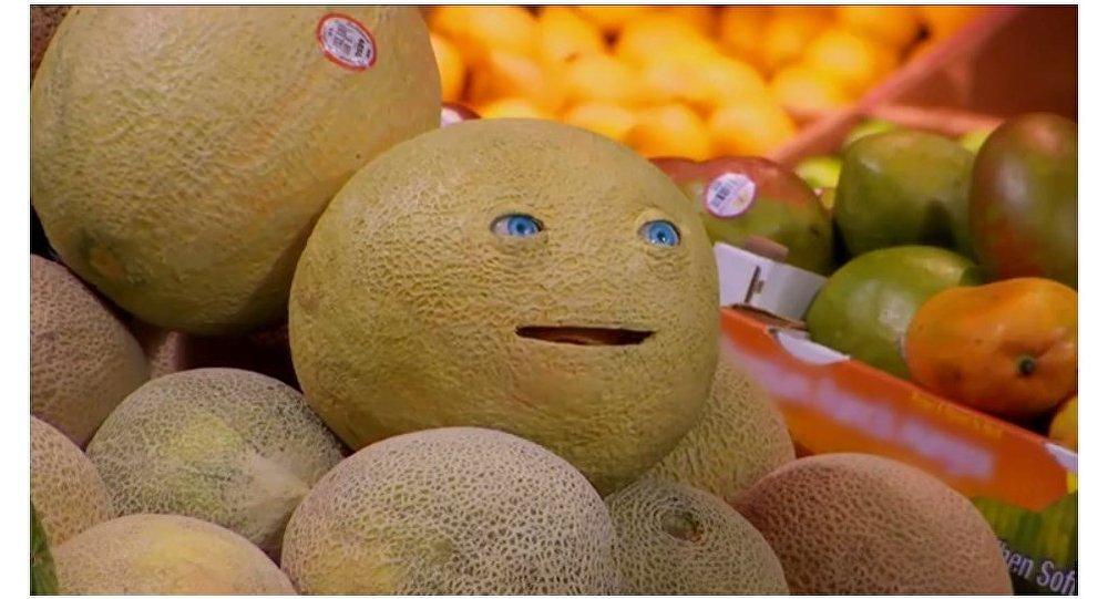Quand un melon et un pain vous parlent au supermarch - Quand cueillir un melon ...