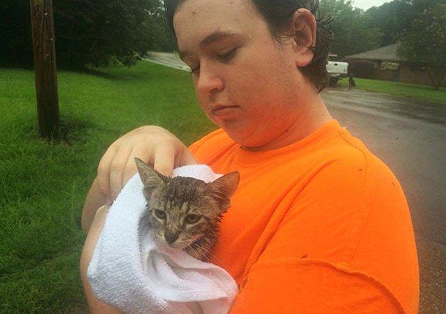 Un chaton sauvé