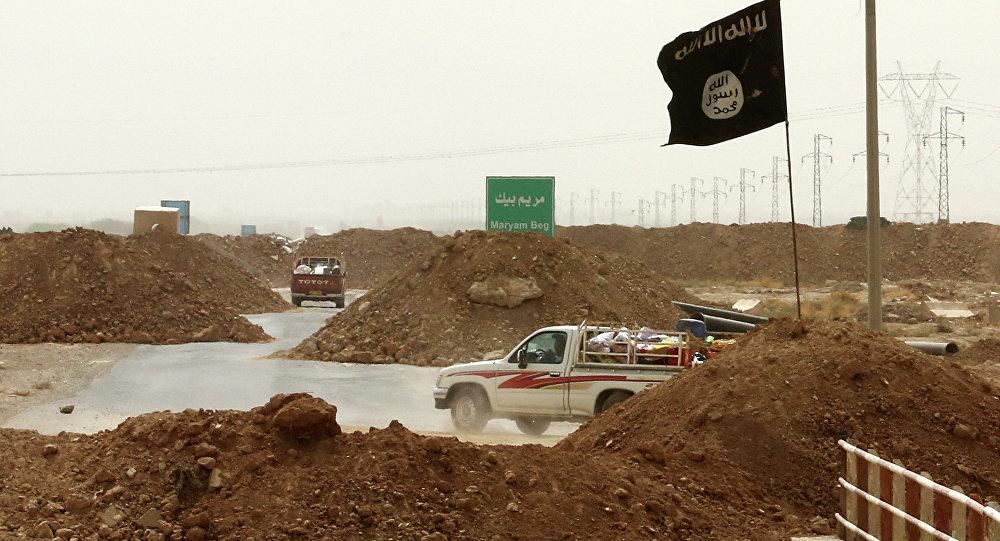 Militants de l'Etat islamique