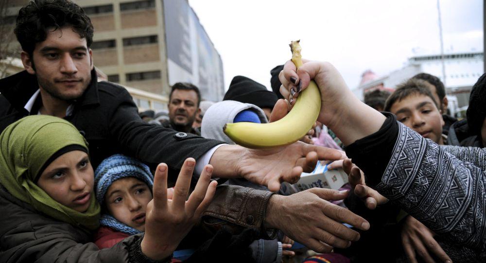 Distribution de norriture dans un camp de réfugiés en Grèce