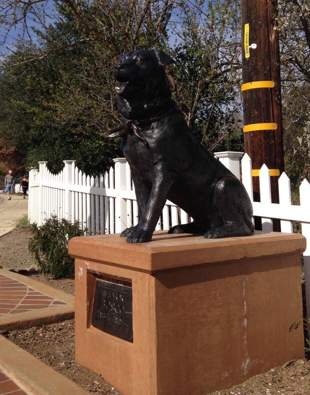Le chien Bosco