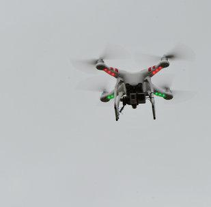 La moitié du territoire syrien proclamée zone interdite aux drones