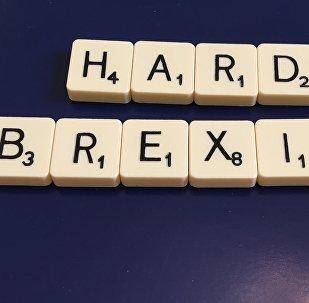 Ambassadrice FR: les Français du Royaume-Uni tristes à cause du Brexit