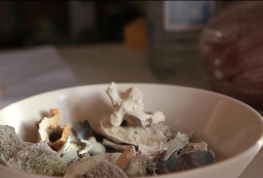 Les os utilisés par Justin Crowe pour fabriquer sa vaisselle