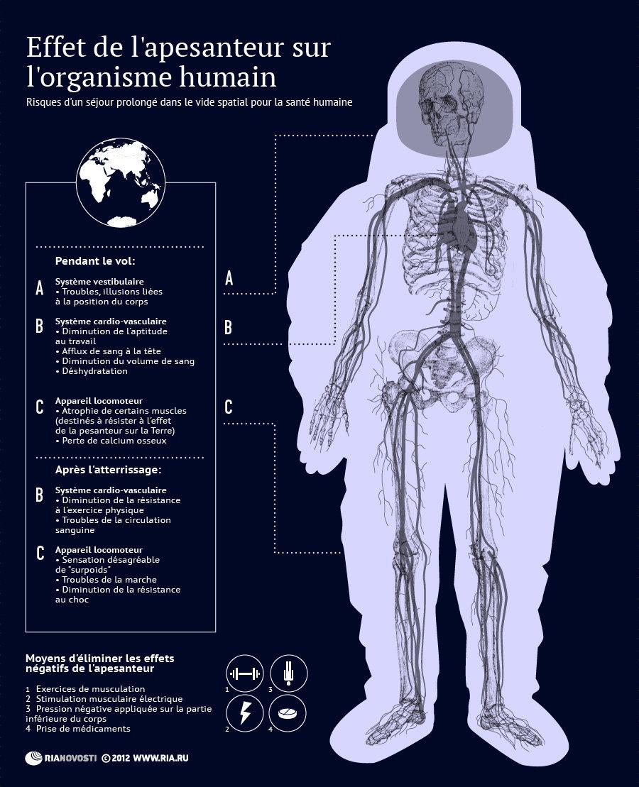 Effet de l'apesanteur sur l'organisme humain