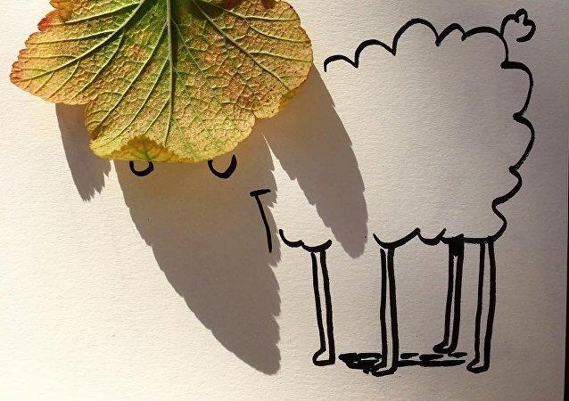 Les illustrations par jeux d'ombres de Vincent Bal