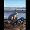 Cet ours polaire et ce chien semblent être de vrais amis