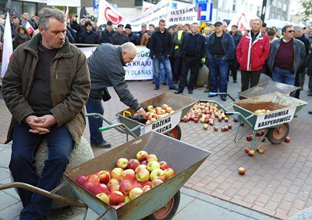 Des agriculteurs polonais