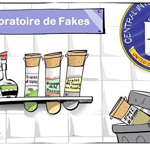 Le petit magasin de CIA de fakes
