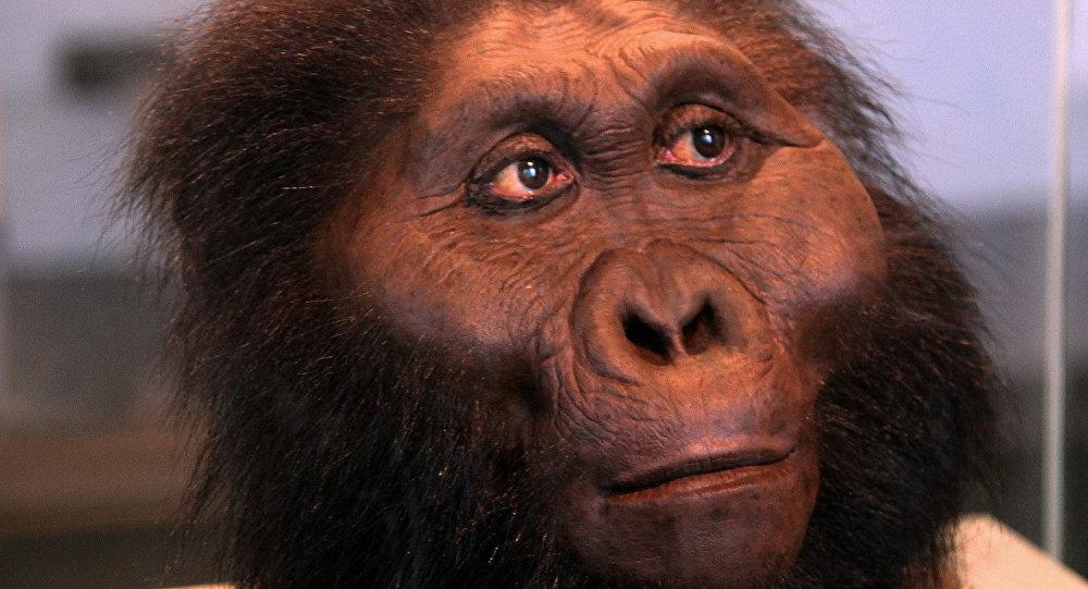 La sculpture représentant un hominidé découvert en Tanzanie