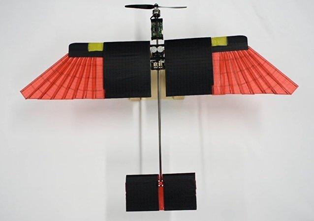 Ces nouveaux drones suisses volent avec des plumes