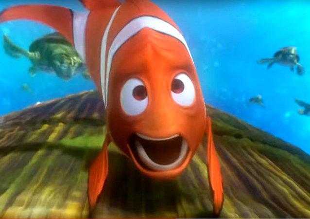 Plouf-plouf! Obama part loin dans les récifs coralliens