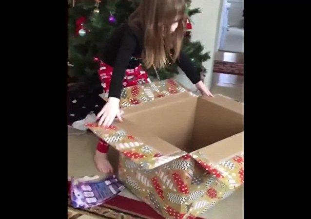Quand ton cadeau de Noël se cache