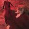 Un roux moustachu devient obstétricien pour une chèvre
