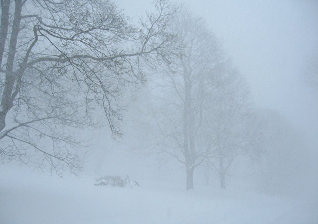 Les tempêtes de neige laissent des milliers de foyers sans électricité en France