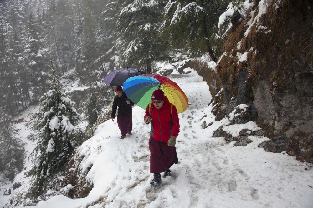 Des moines tibétains pendant les chutes de neige en Inde
