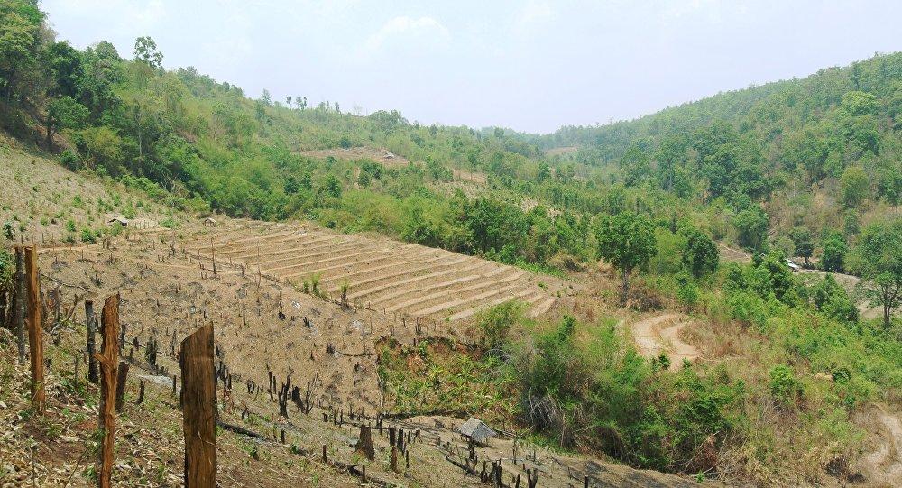 Terres agricoles Karen au nord de la Thaïlande