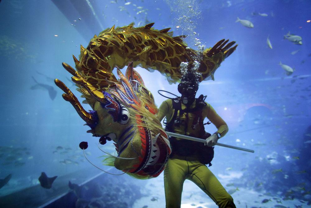 Un plongeur fait la danse du dragon dans l'aquarium de Singapour