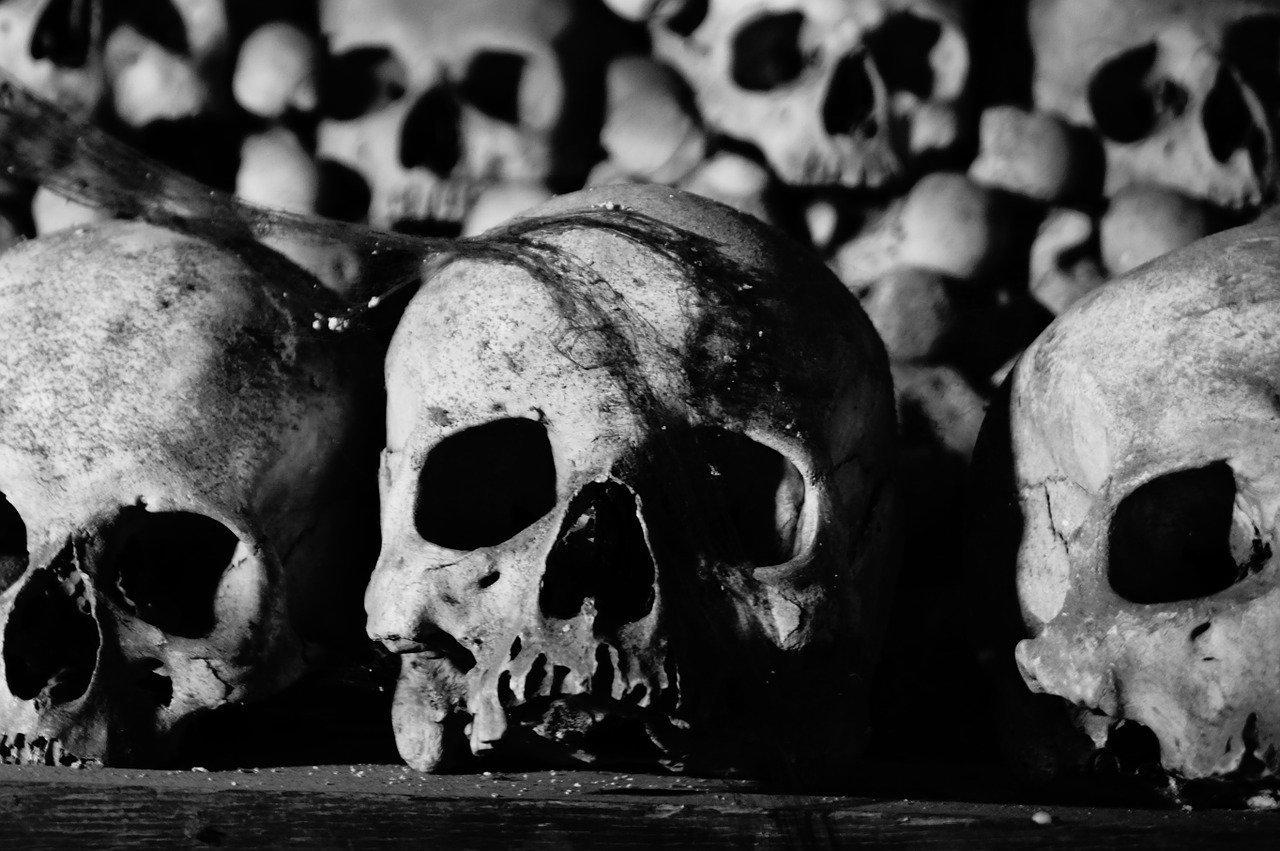 Des crânes humains profanés