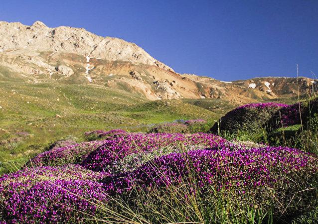 La nature et la vie rurale du nord de l'Iran